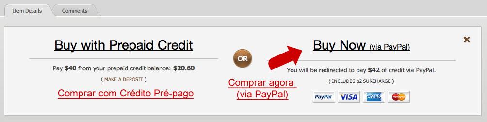 """2 opções para escolher. A mais rápida é """"Buy Now (via PayPal)"""""""